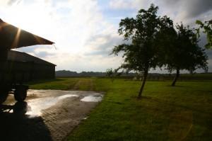 Sonne nach dem Regen