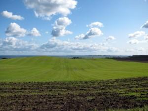 Dänische Landschaft. Teletubbies? Windows-Startbildschirm?