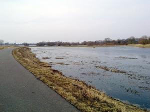 Havelradweg - noch immer überflutete Ausgleichsflächen