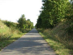 Bahnradweg bei Vietzen