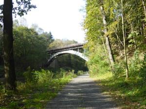 Oder-Neisse-Radweg zwischen Ostritz und Zittau