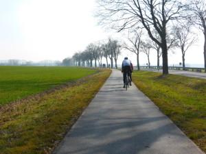 Brandenburger Allee mit gutem Radweg