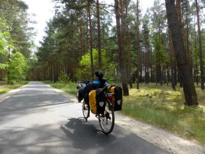 Micha auf Gurkenradweg