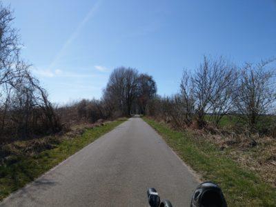 Radweg in Brandenburg
