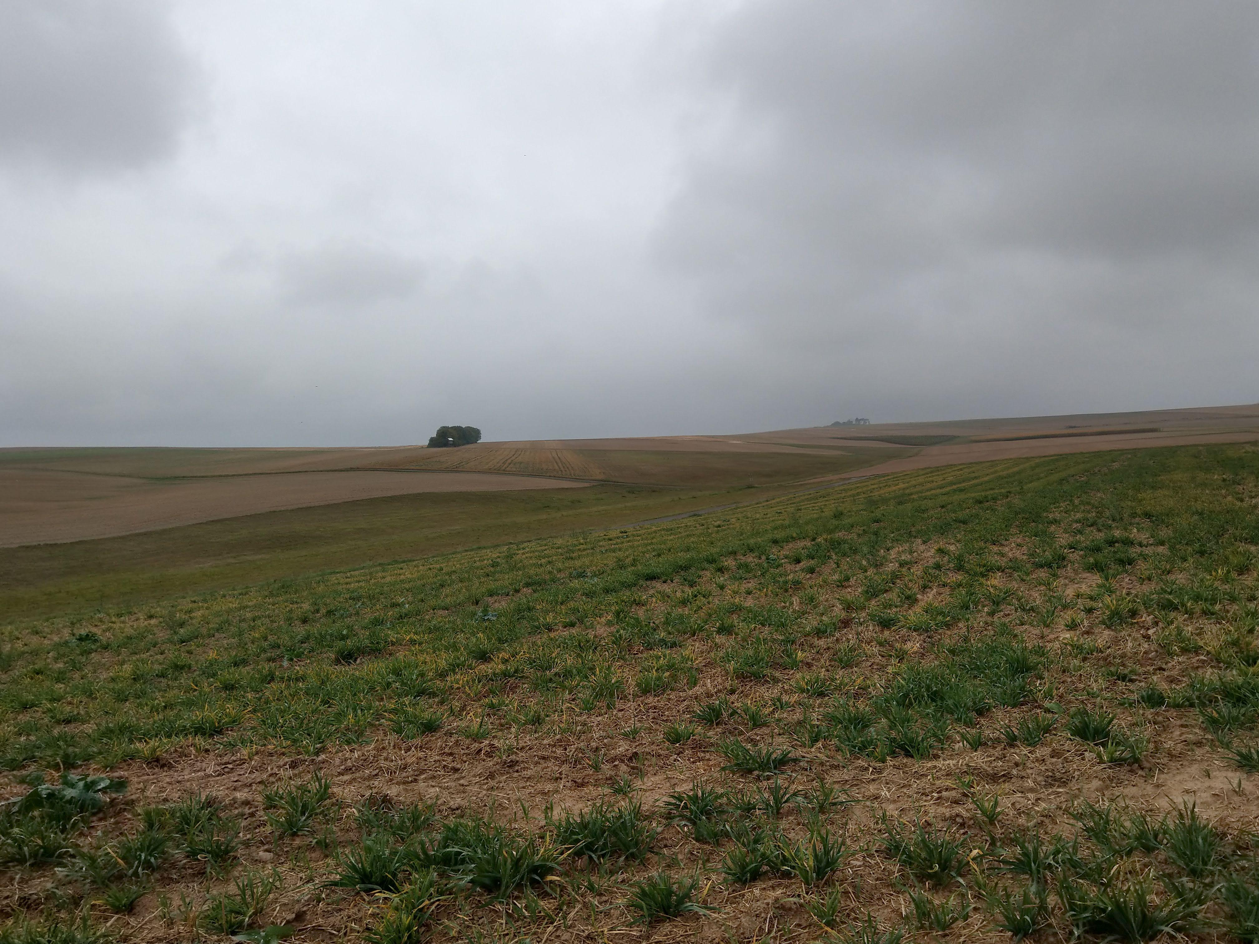 Regenwolken hängen über der Landschaft