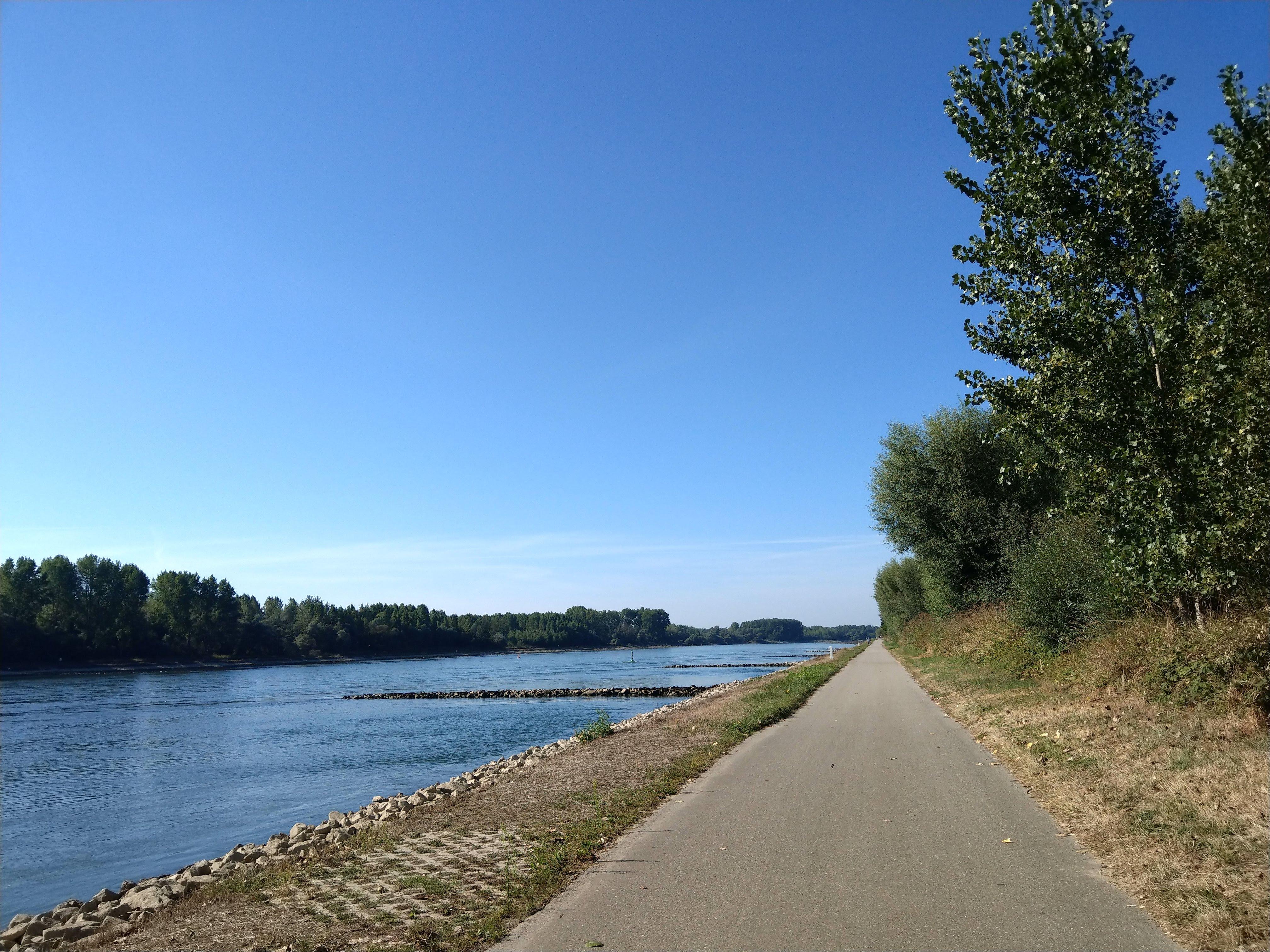 Der Rhein-Radweg in Frankreich
