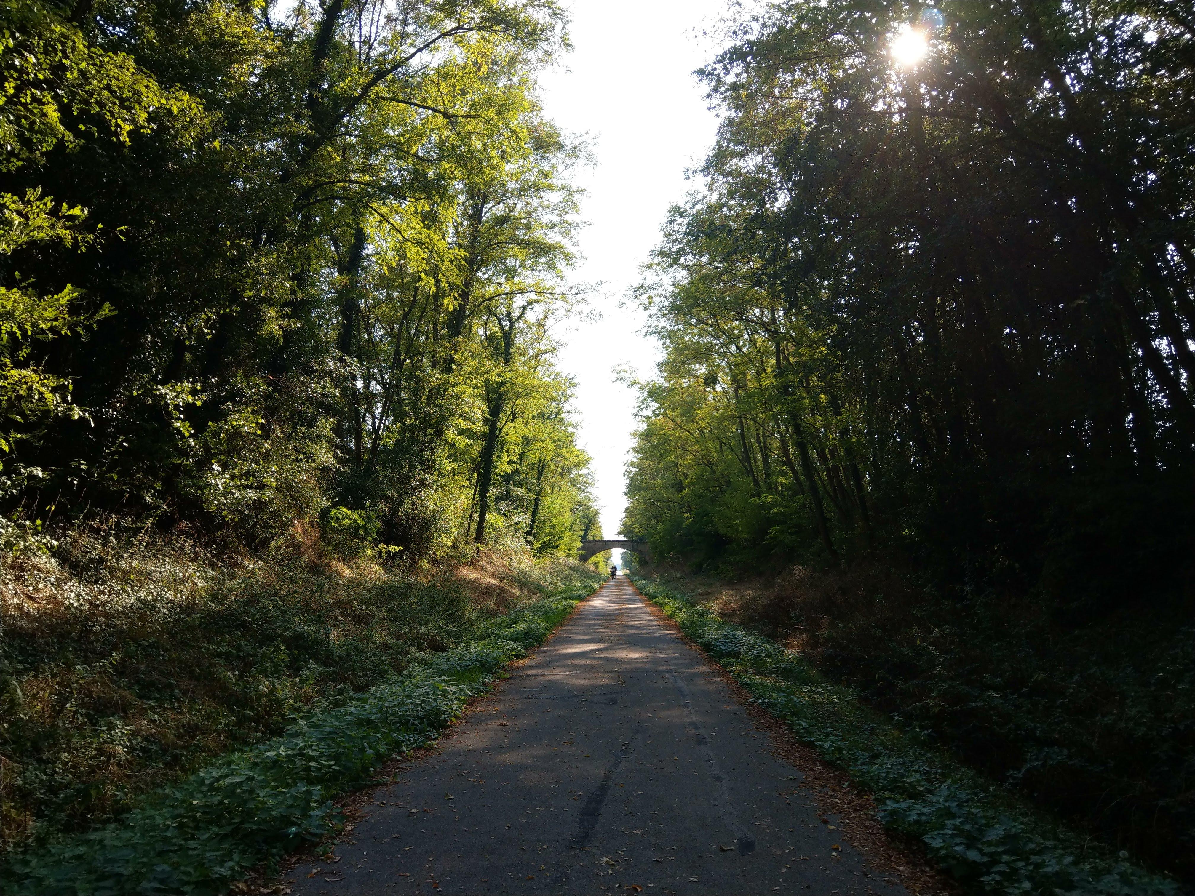 Bahnradweg bei Chalon sur Saône