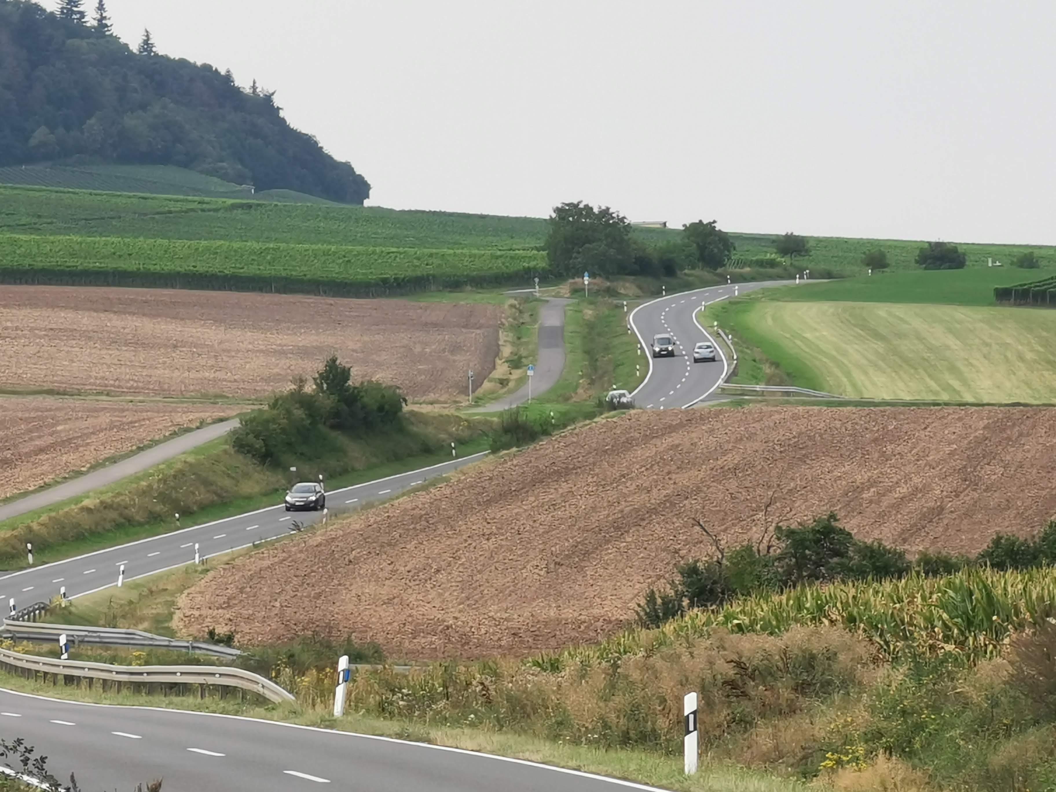 Straße mit Radweg
